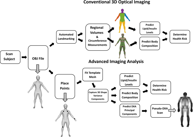 Digital anthropometry: a critical review