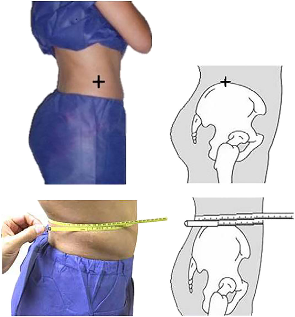 Optimum waist circumference-height indices for evaluating adult adiposity: An analytic review