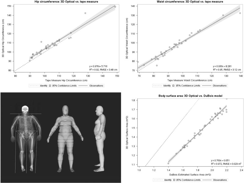Clinical anthropometrics and body composition from 3D whole-body surface scans