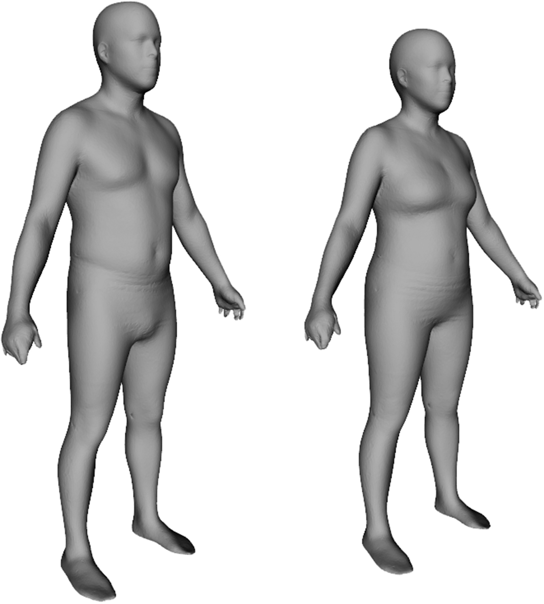 Detailed 3-dimensional body shape features predict body composition, blood metabolites, and functional strength: the Shape Up! studies