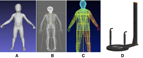 Children and Adolescents' Anthropometrics Body Composition from 3-D Optical Surface Scans